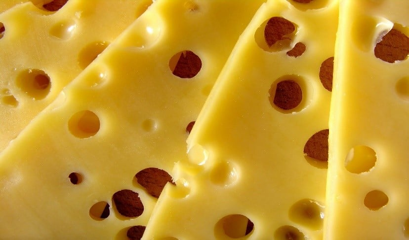 swiss cheese closeup